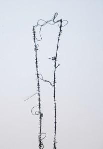 """""""Filo su tela di lino"""" (Elena Nonnis)"""